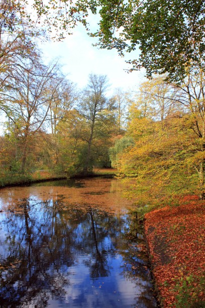 herbstbaeume