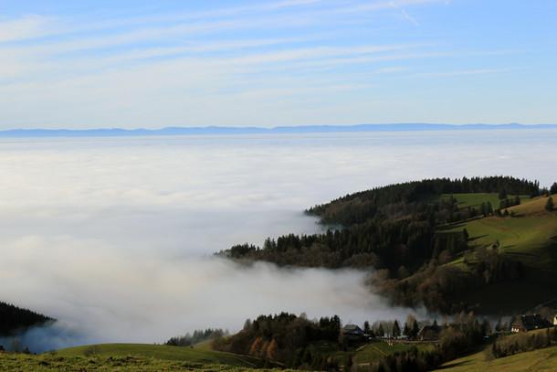 nebel-haengt-ueber-den-bergen