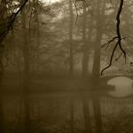 Wetterphänomen Nebel