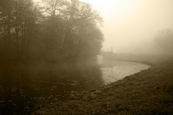 Buergerpark im Nebel