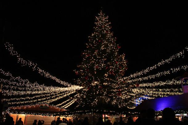 Weihnachtsbaum Lübecker Weihnachtsmarkt