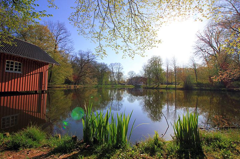 Blick auf den See im Bürgerpark