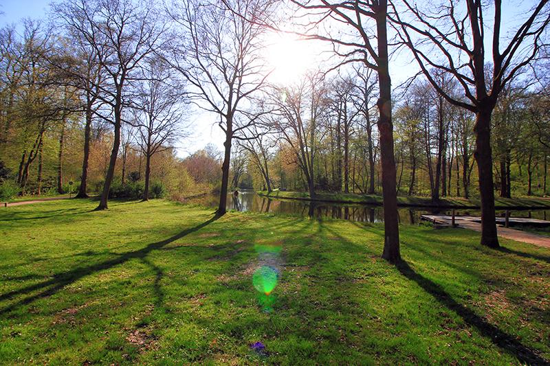 Sonnenschein im Bürgerpark