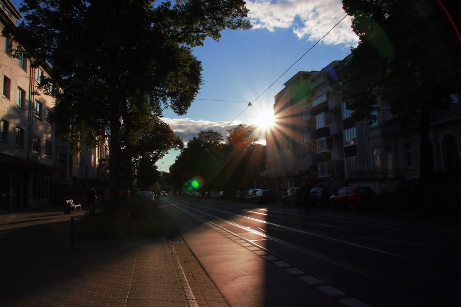 Gegenlicht Sonne