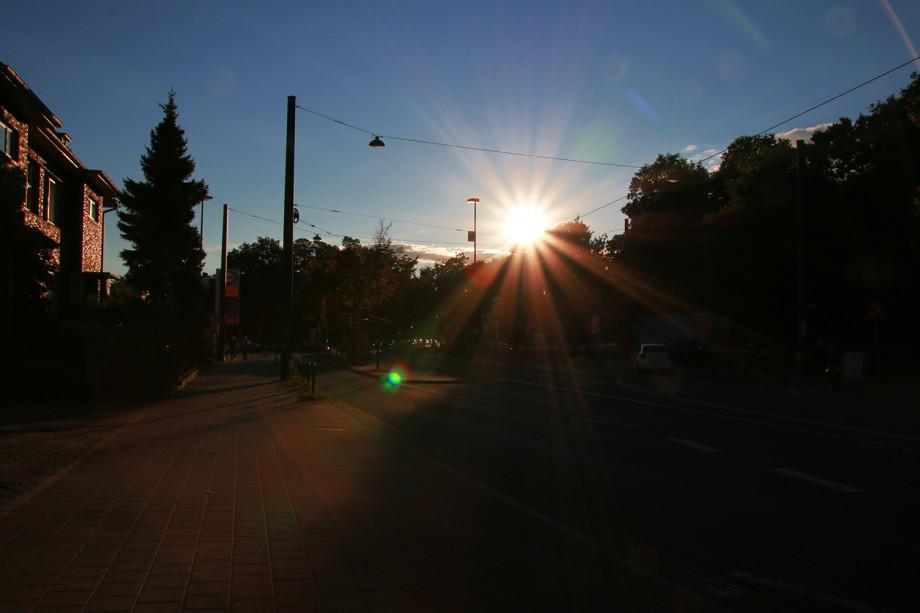 Im Gegenlicht Sonne