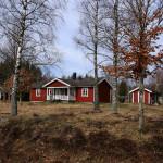 Natur pur in Schweden