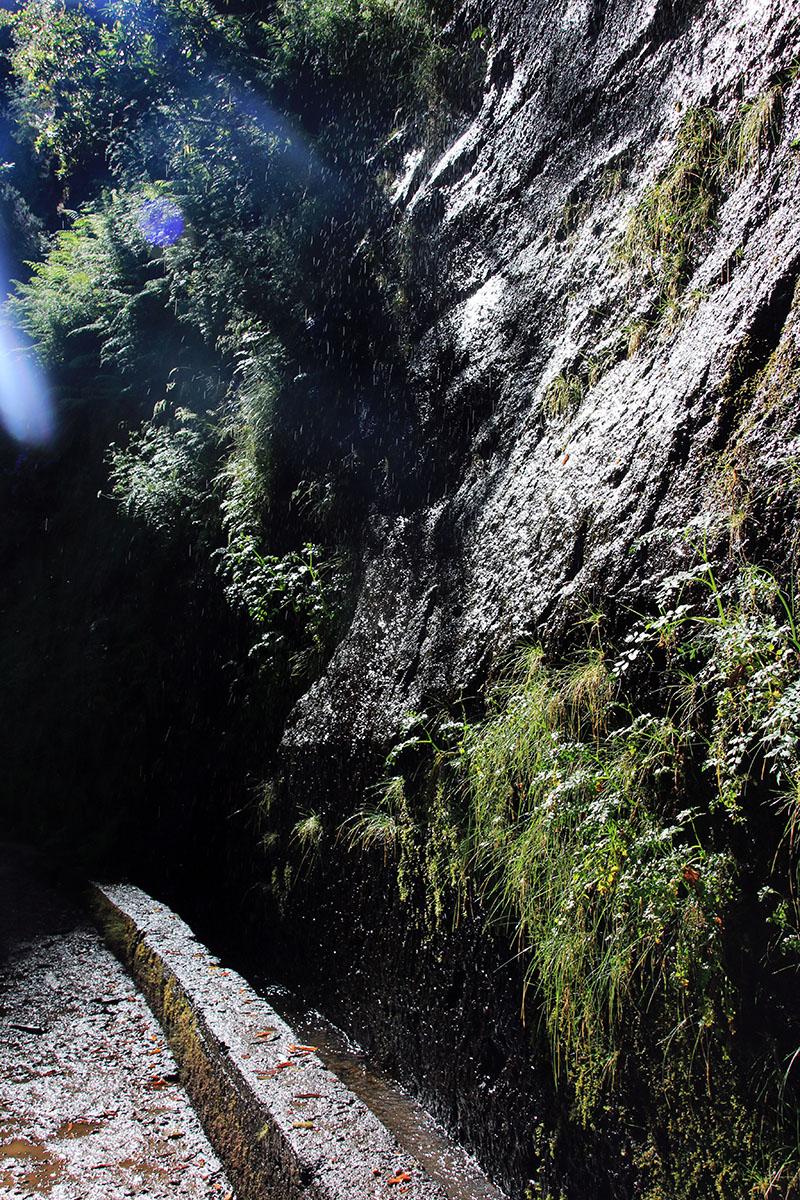 Levada Wanderung Madeira