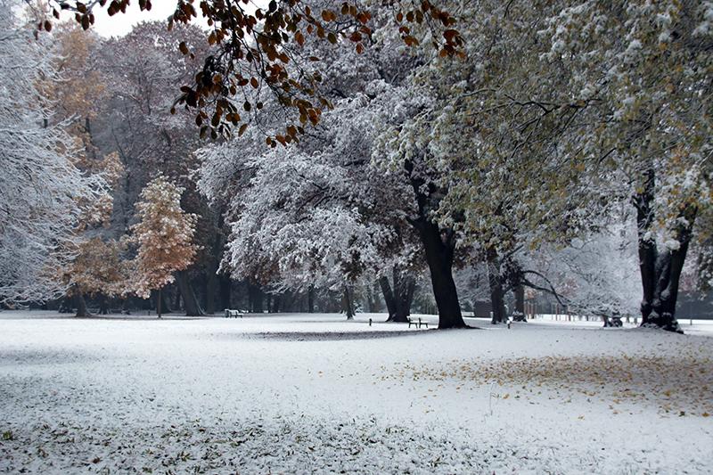 Schnee im Bürgerpark Bremen