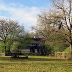 """""""Schönheiten"""" im Bürgerpark"""